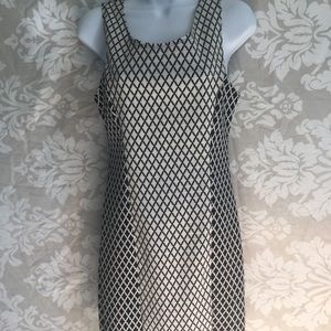 Papaya slim dress. Form fitting, Size Large.